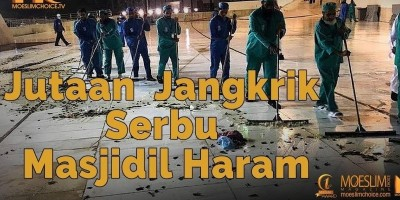 Jutaan Jangkrik Serbu Masjidil Haram