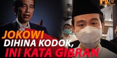 GIBRAN RESPON HINAAN JOKOWI KODOK