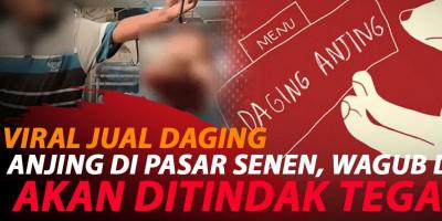 VIRAL DAGING ANJING DIJUAL DI PASAR SENIN
